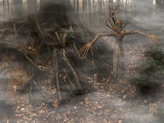 Wandernde Zweig