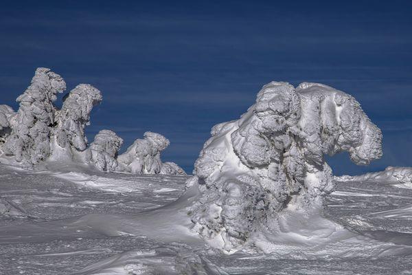 Wanderung der Eis Aliens