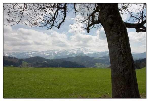 Wanderung im Appenzeller Land
