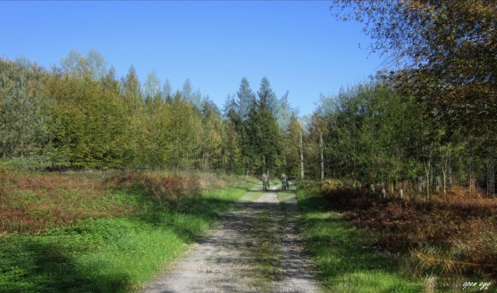 _ Wanderweg _