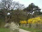 Wanderweg im Frühling