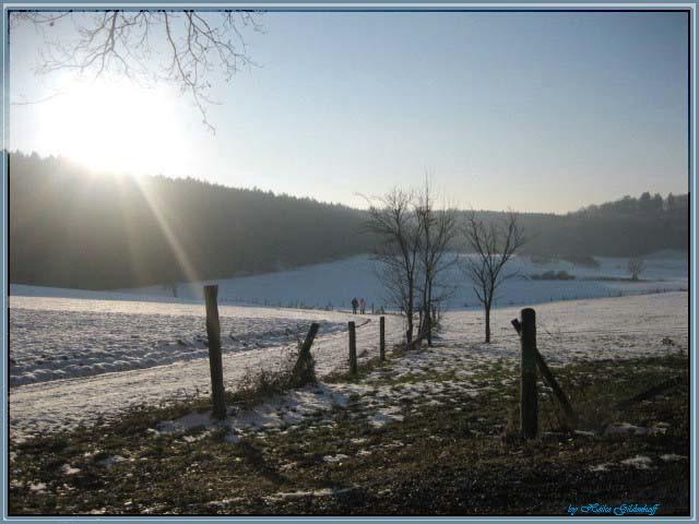 Wanderweg im Odenwald