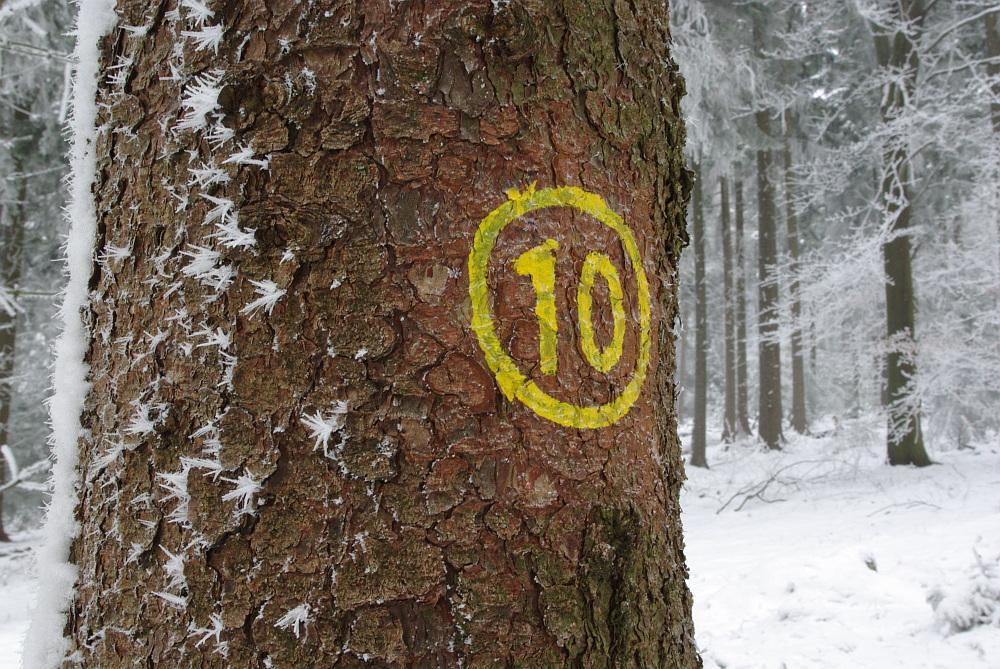Wanderweg Nr. 10