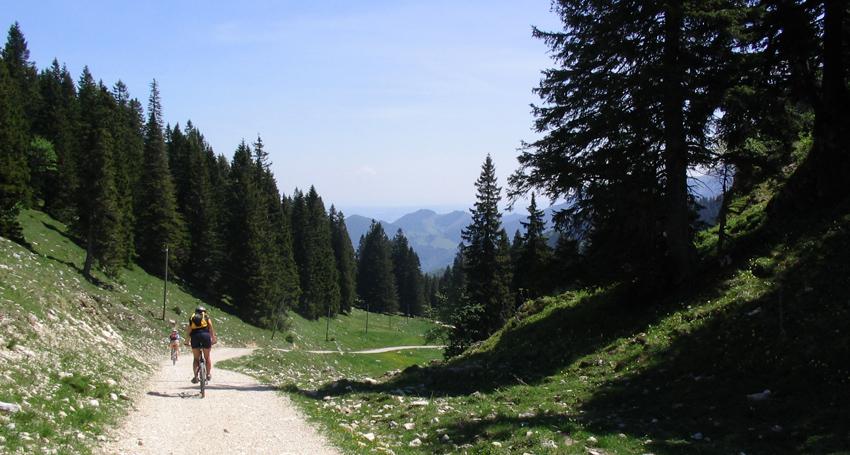 Wanderweg unterhalb der Riesenhütte