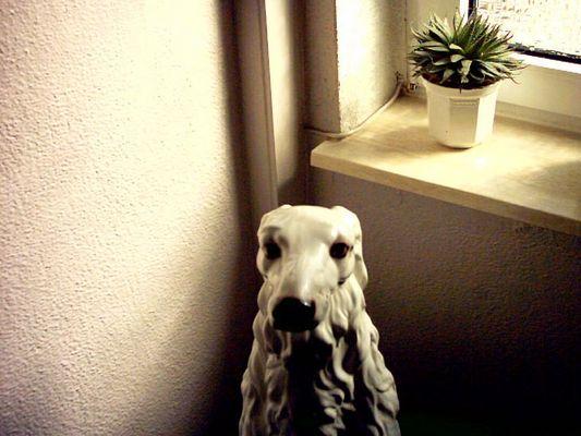 Wandhund