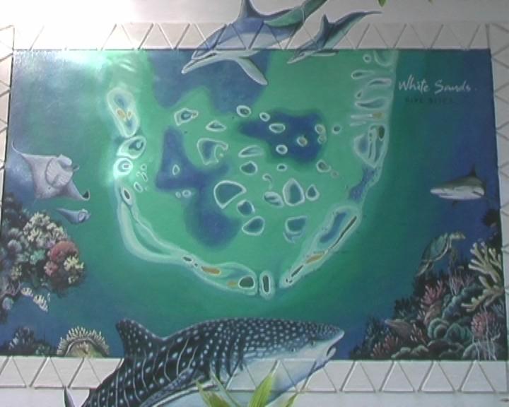 Wandzeichnung der Riffe des Süd Male Atol zum Tauchen