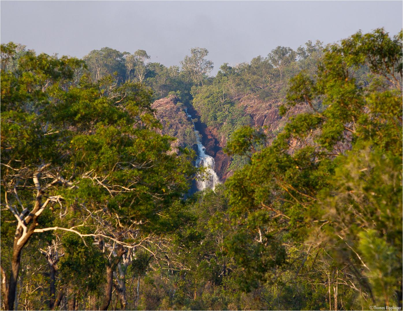 Wangi Falls im Litchfield-Nationalpark