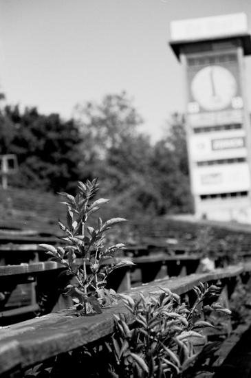 Wankdorf, no. 2. Eine Dokumentation
