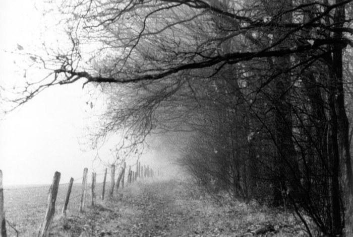 war das ein nebel