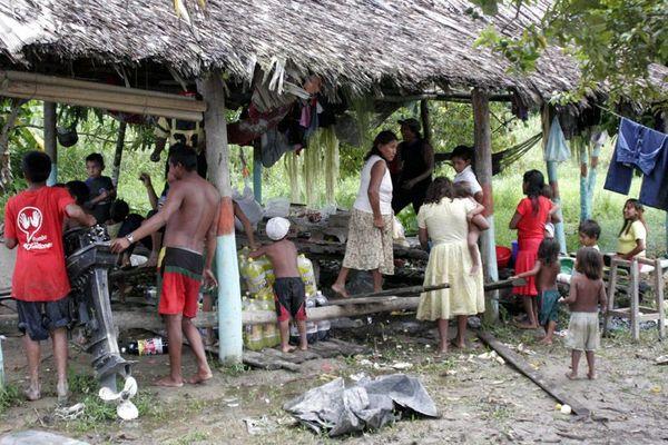 Warao Indianer / die Behausung