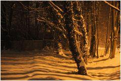 Warmer Schnee...