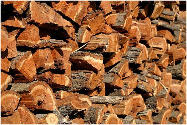 Warmes Holz