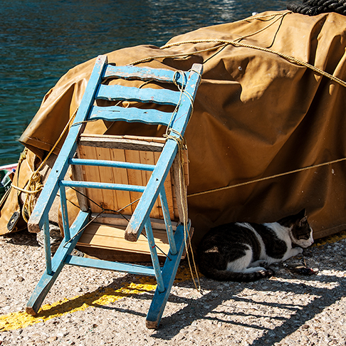 Warten auf den Fischer...
