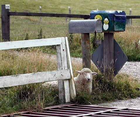 Warten auf den Postboten