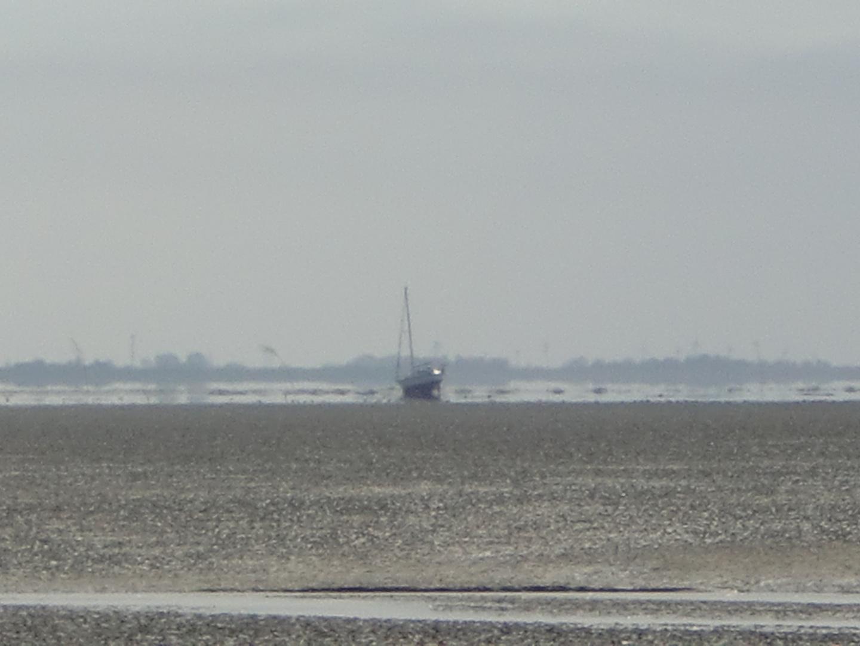 Warten auf die Flut - im Watt vor Wangerooge