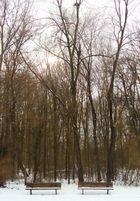 warten auf ein bisserl winter- sonne