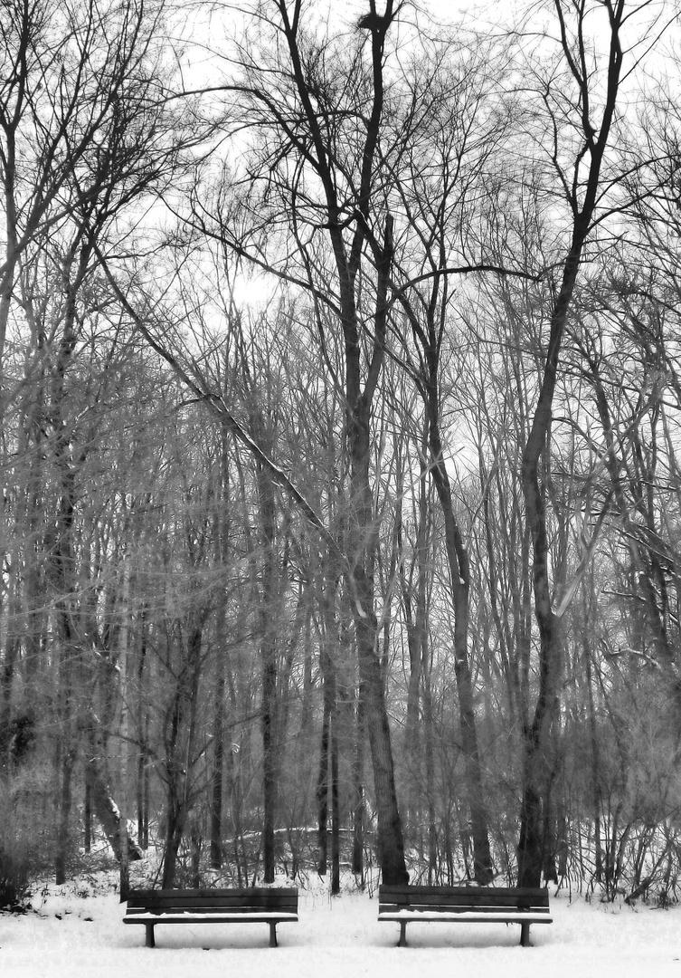 warten auf ein bisserl winter-sonne