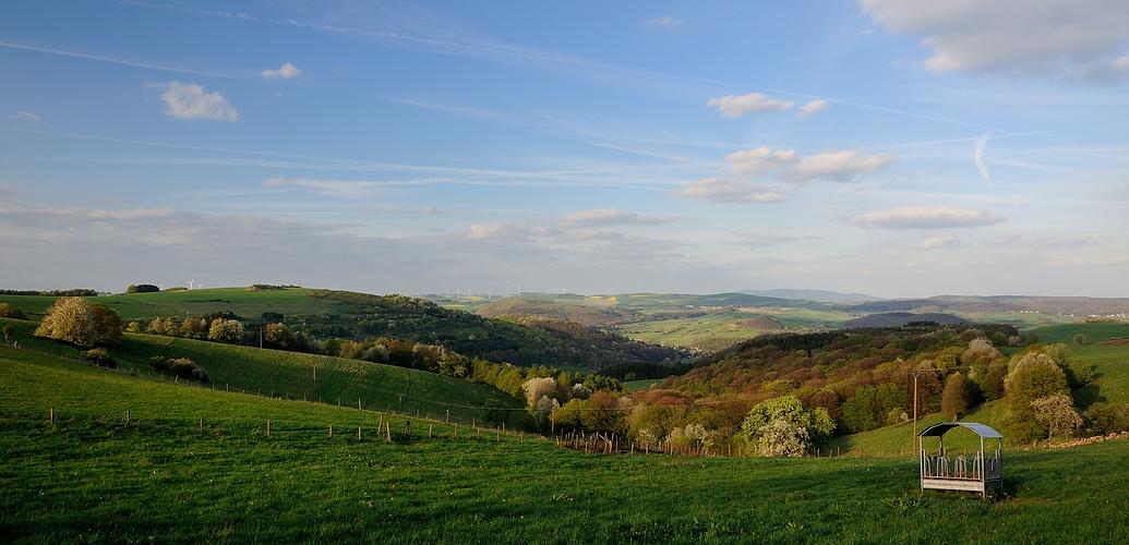 Warum in die Ferne schweifen, wenn das Gute liegt so nah, die Pfalz in der Abendsonne.