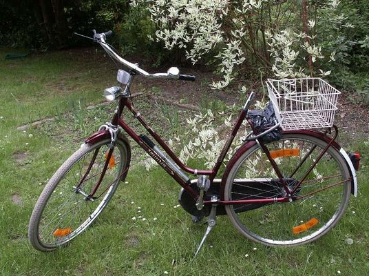 Warum ist das wohl ein Damen-Fahrrad?