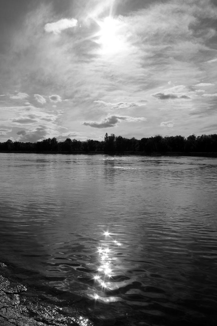 Warum ist es am Rhein so schön...