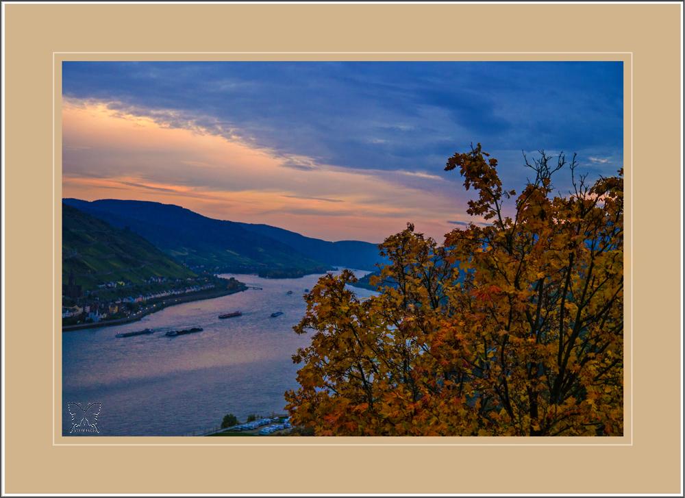 ~ Warum ist es am Rhein so schön :-) ~