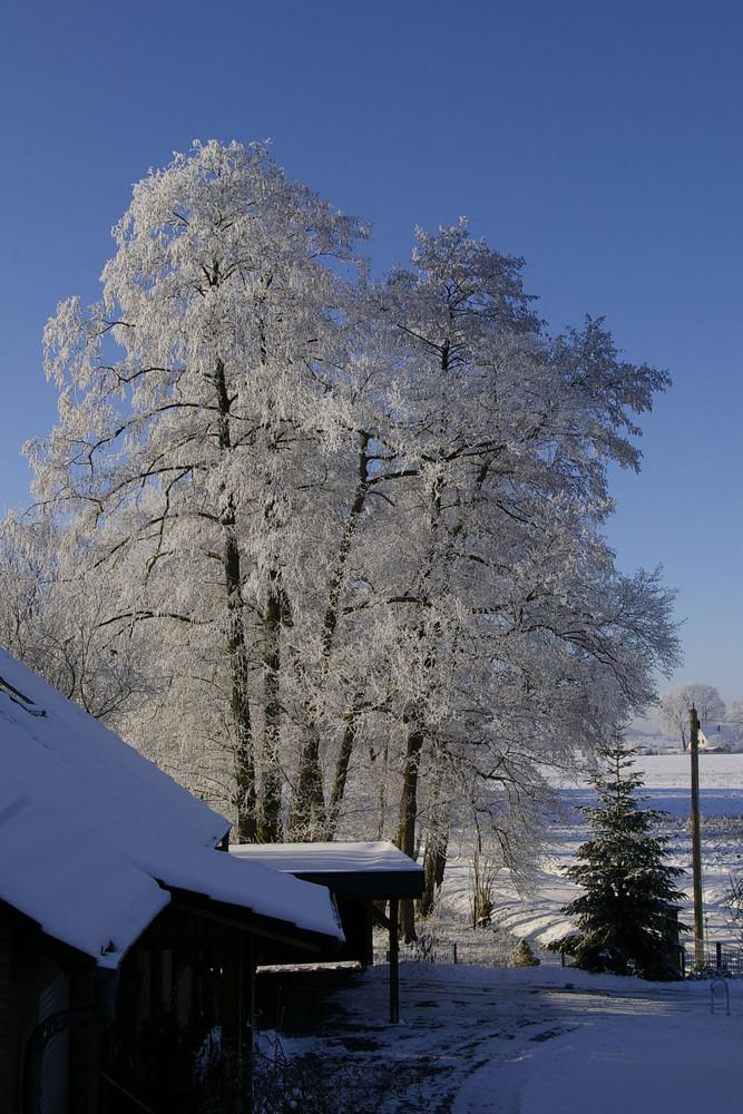 Was für ein wunderschöner Tag!!!