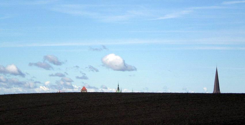 was heute alles so auf den Feldern wächst ...