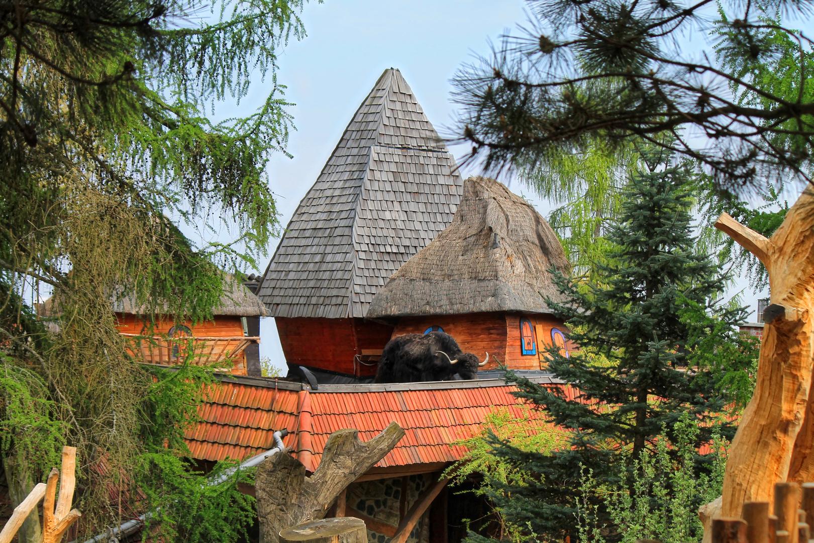 Was macht das liebe Vieh auf dem Dach...
