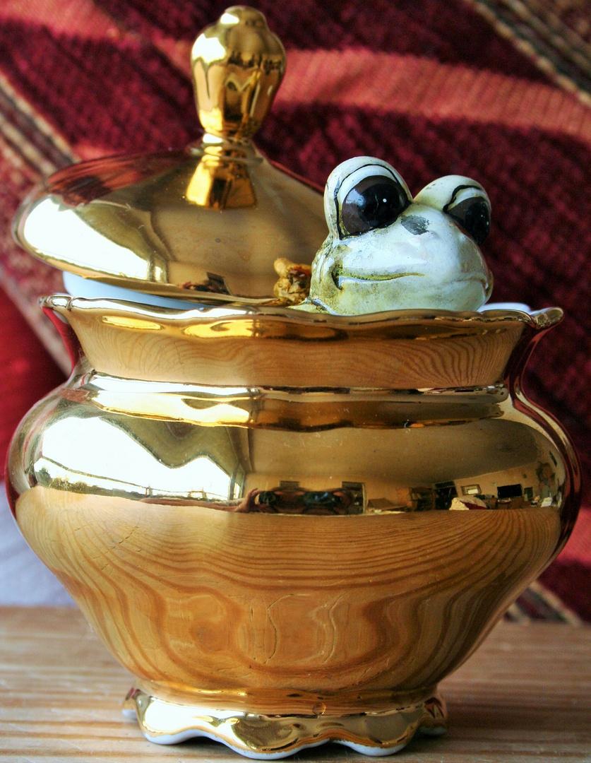 was macht der Frosch in meiner Zuckerdose?