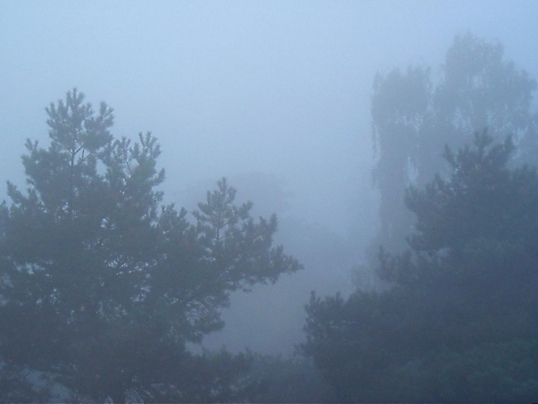 Was versteckt sich hinter dem Nebel?