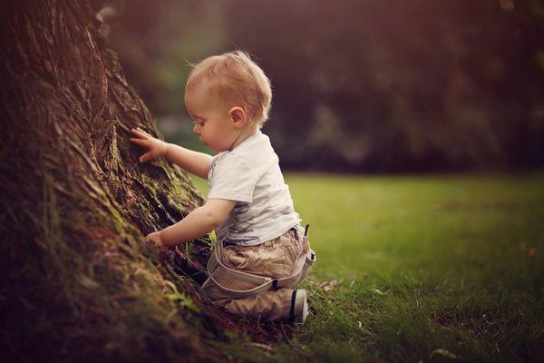 ... was wohl in dem Baum versteckt ist
