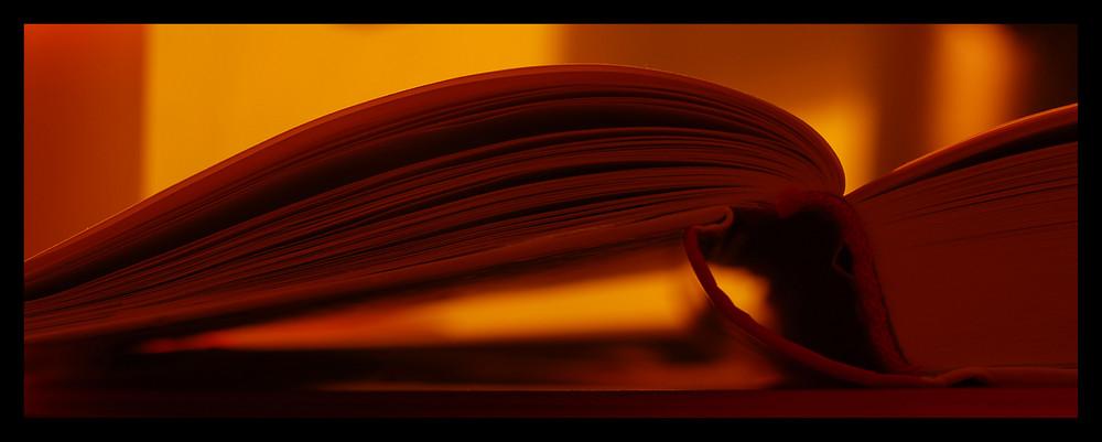 ...was zum lesen...