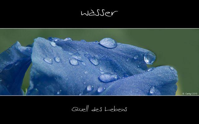 Wasser….