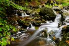 Wasser des Lebens