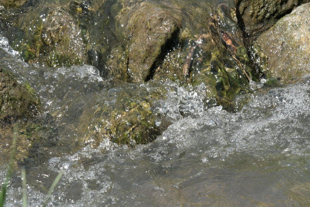Wasser ein Element des Lebens
