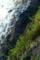 Wasser & Erde