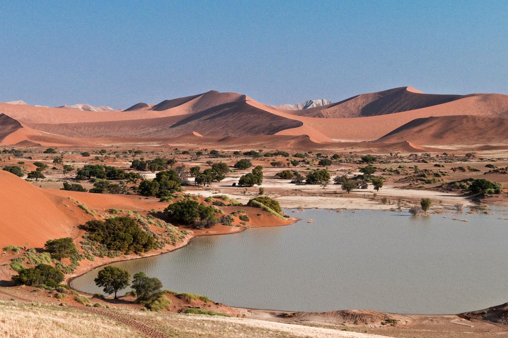 Wasser in der Namib Wüste