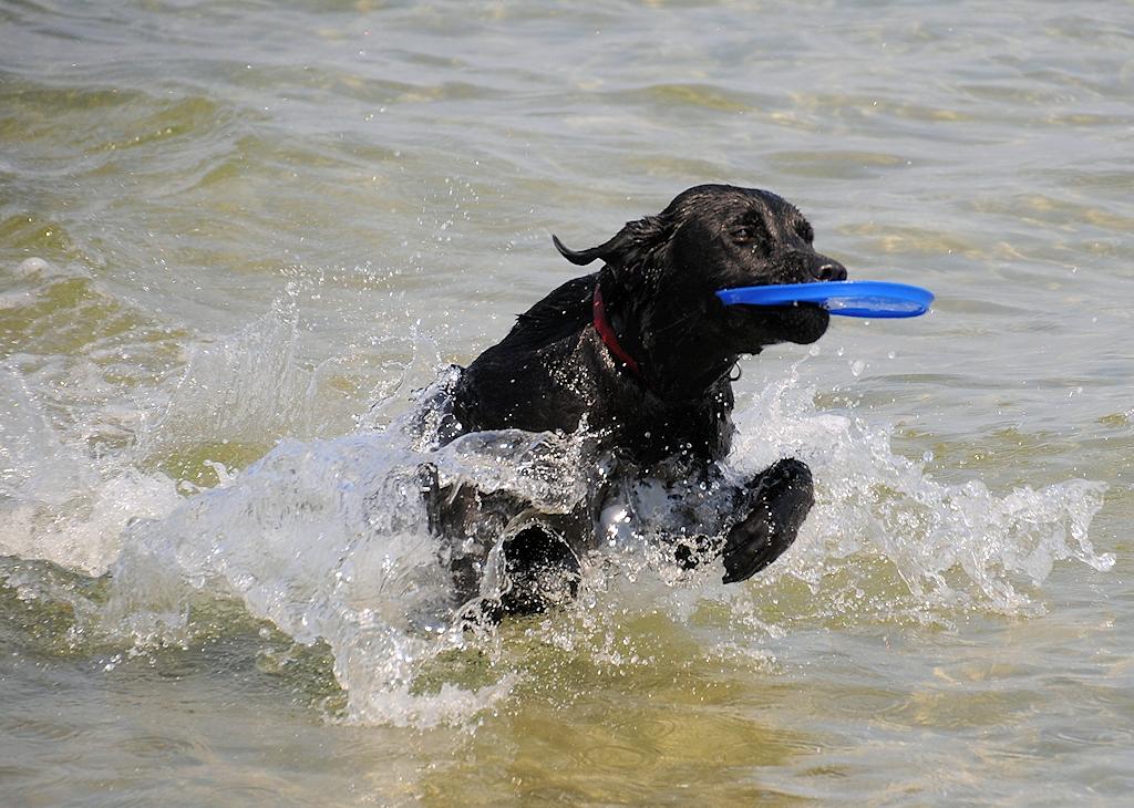 Wasser ist sooo toll!