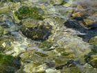Wasser Istrien 7