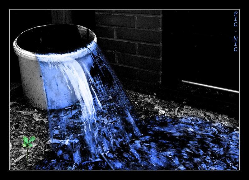 Wasser - Leben