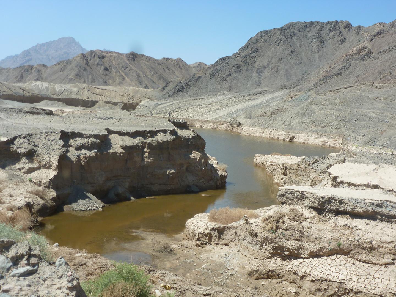 Wasser Quele in der Wüste Egyptens