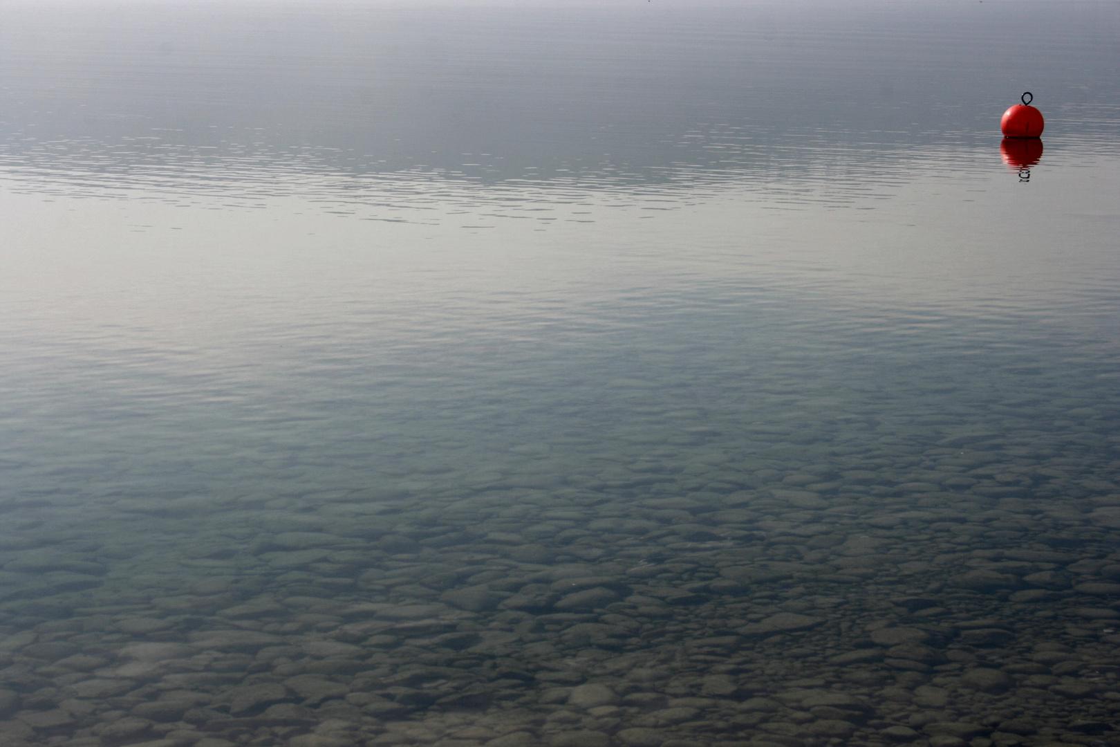 Wasser t