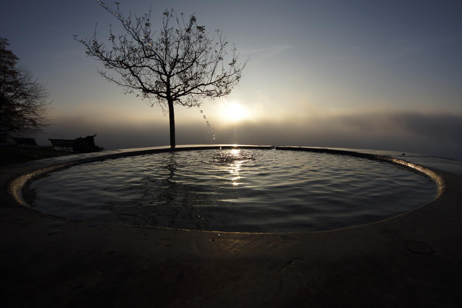 Wasser und Sonne