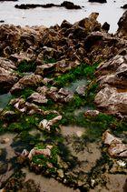 Wasser und Steine