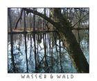 Wasser & Wald