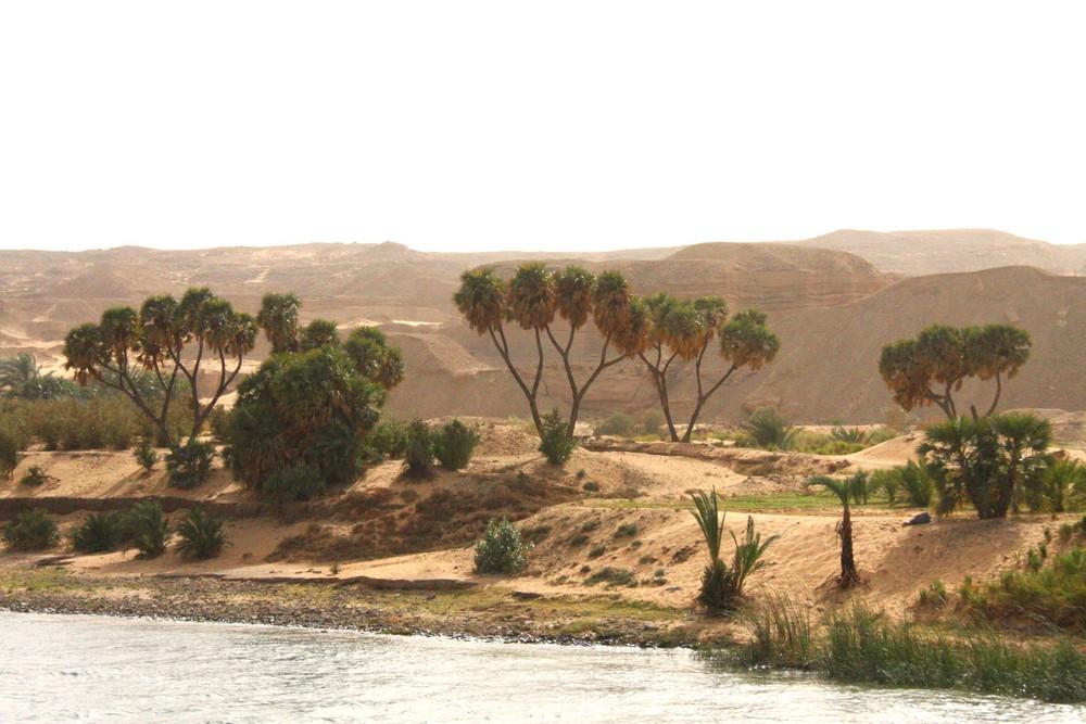Wasser, Wüste und Wind bei 45°C