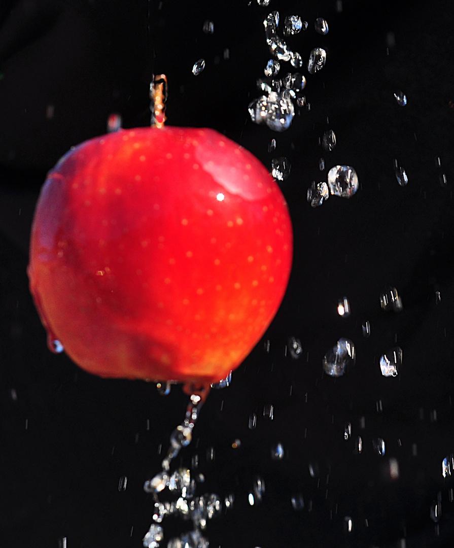Wasserapfel