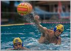 Wasserball ... Waterpolo