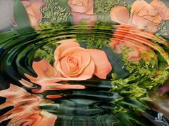 Wasserblumen oder -spiegelungen 3