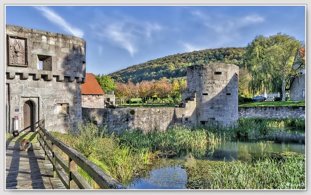 ~ Wasserburgruine Friedewald ~